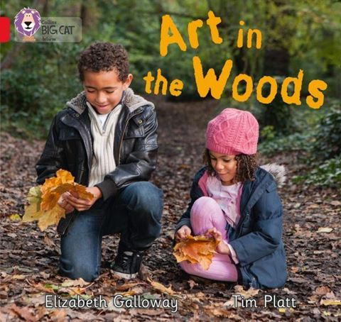 Resim  COLLINS BIG CAT : RED B BAND2B: ART IN THE WOODS